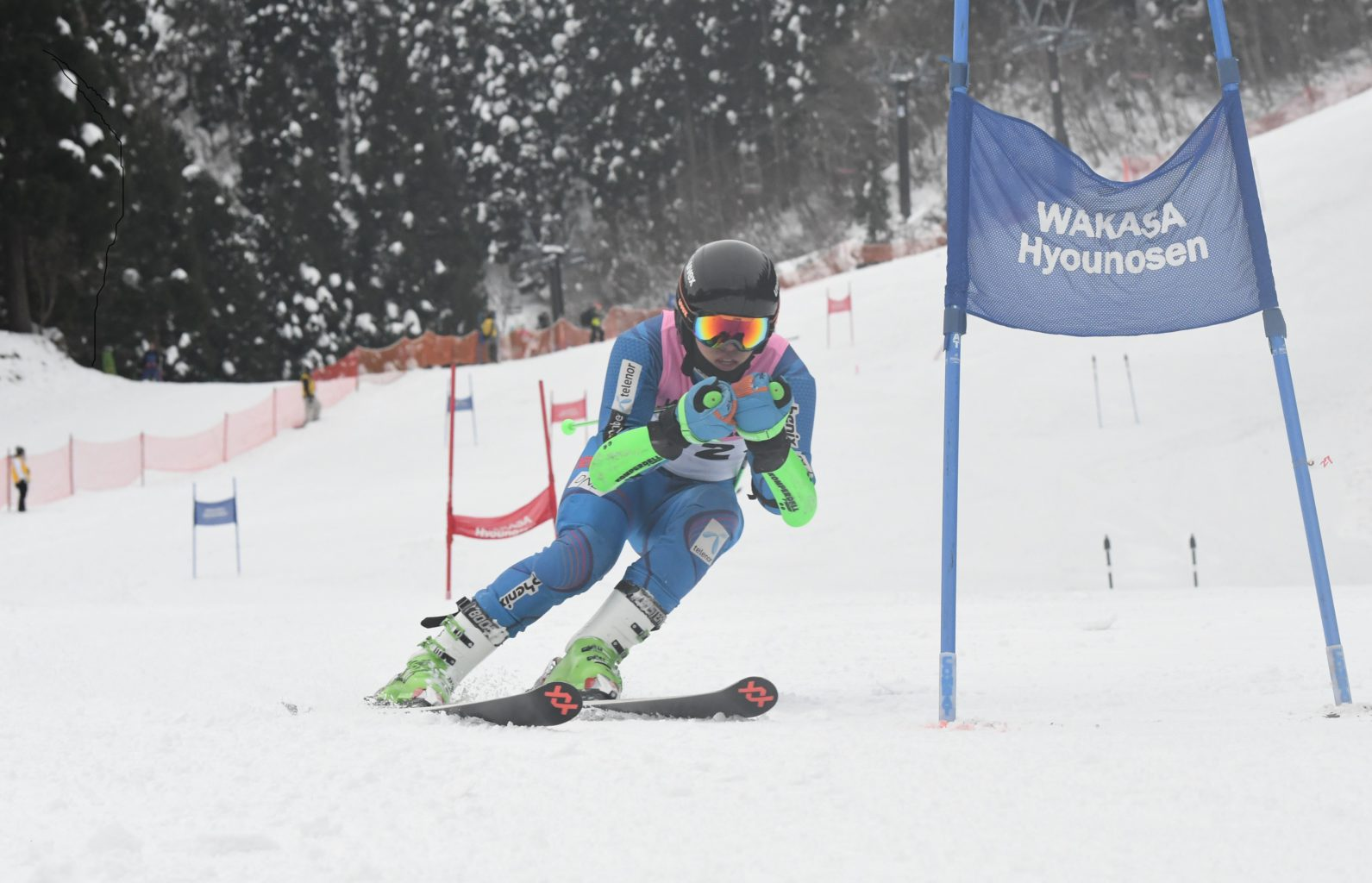2018~2019シーズン成績 スキー部